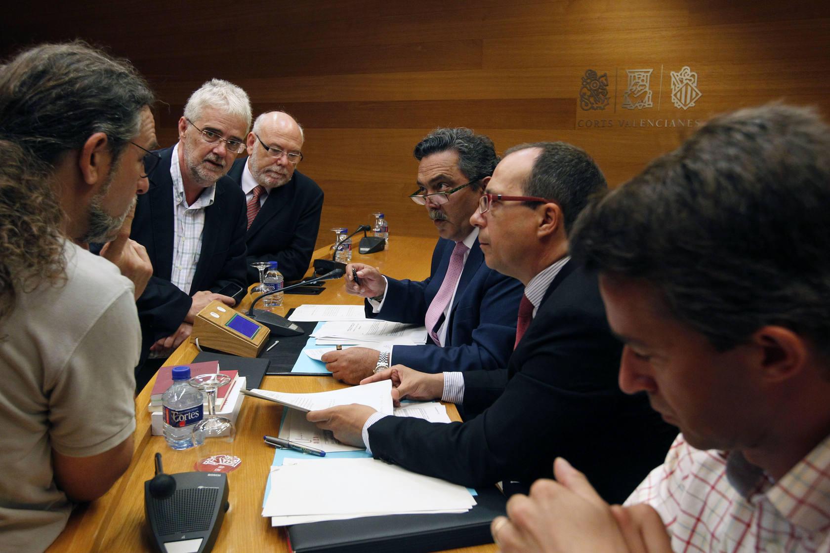 Comisión de Medio Ambiente en Les Corts