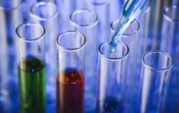 Test de ADN nutricional por solo 79€