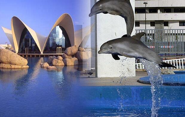 Entrada Oceanografic + Museu + Hemisferic
