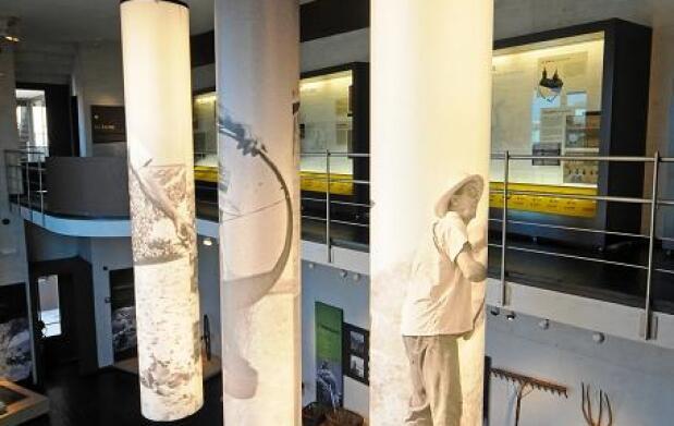 Visita a bodega + Museos del Dios Baco