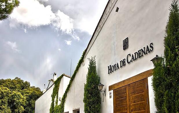 Visita a la bodega Hoya de Cadenas